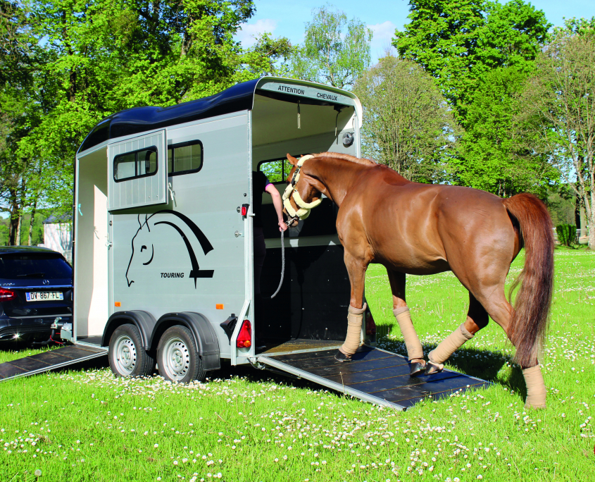 20190207 TOURING ONE_cheval entrant van_arriere